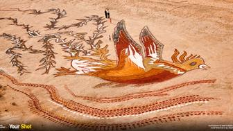 The designs by artists in the island of Hormuz by Iran's Hormozgan colored soil that is naturally drawn to the island