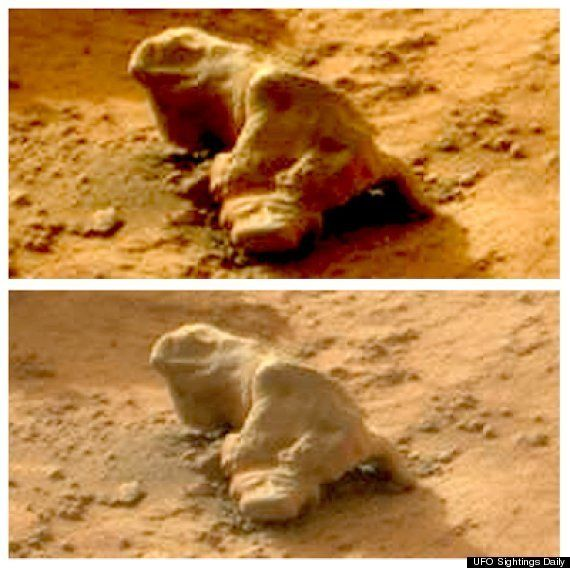 """NASA's Curiosity rover captured this cutie on Mars in January 2013. The <a href=""""https://www.huffpost.com/entry/mars-iguana-n"""