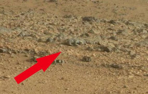 """The <a href=""""https://www.huffpost.com/entry/mars-rat-nasa-curiosity-photo_n_3354155"""" target=""""_blank"""">""""Mars rat""""</a> was found"""
