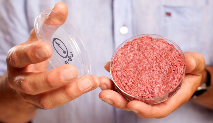 A lab-grown meat burger made from cultured beef, which has been developed by Professor Mark Post of Maastricht University in