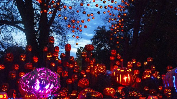 Forget two triangles and a crooked smile. The most memorable of the 5,000-plus illuminated pumpkins at Rhode Island's <a href
