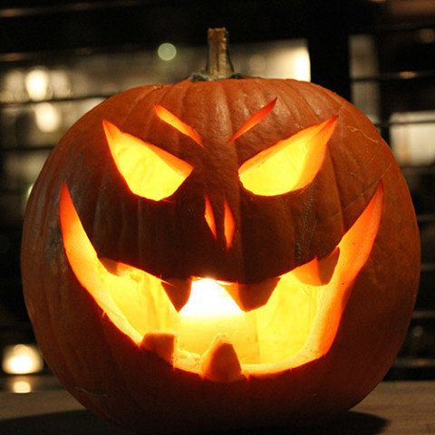 To give your pumpkin a longer life, spray it with a diluted bleach solution or place it near a fan to prevent decay and keep