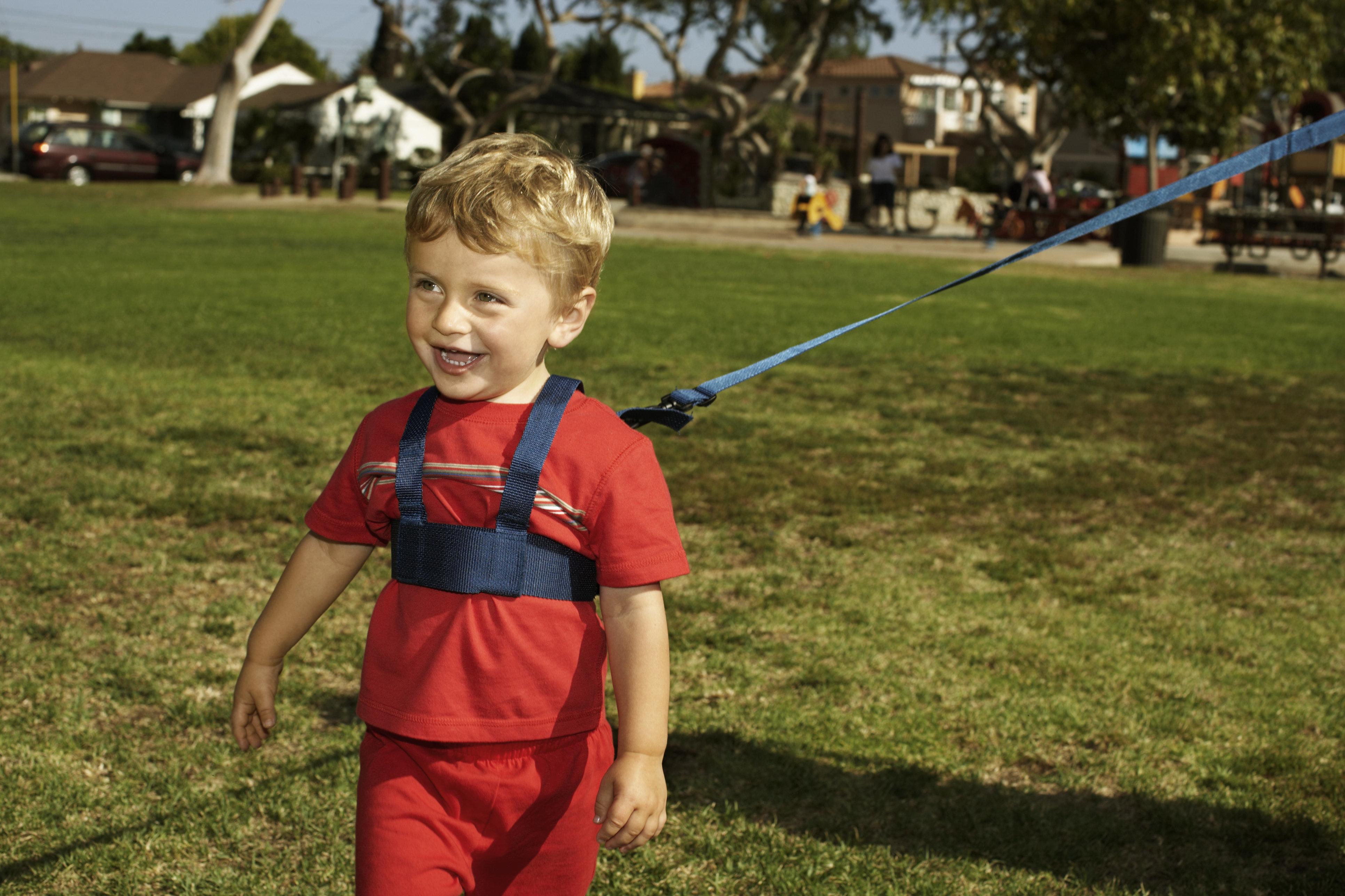 Boy (12-15 months) wearing harness in park