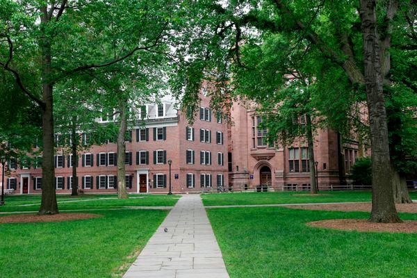"<strong>Course Title:</strong>&nbsp;<a href=""http://philosophy.yale.edu/undergraduate-program/undergraduate-courses-2015-2016"