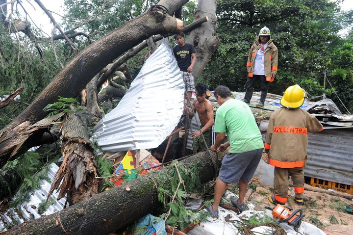 Rescue workers clear a fallen tree that killed a 14-year-old boy in Manila. Typhoon Koppuhas left at least 58 people de
