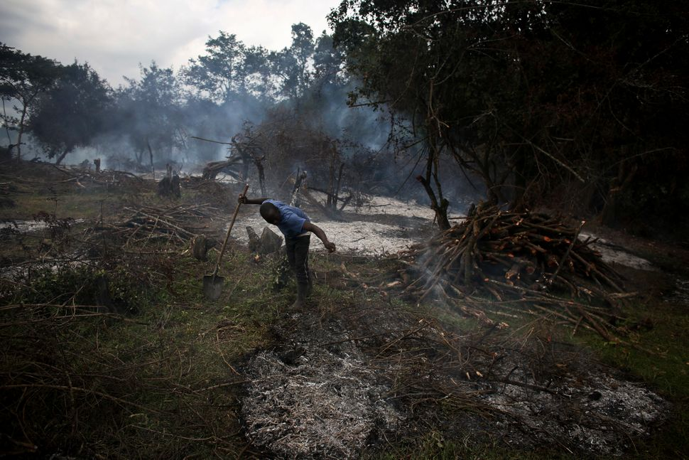 A Kenyan man chops and burns trees in Narok, Kenya, Aug. 17, 2015. Deforestation is one of the many problems associated