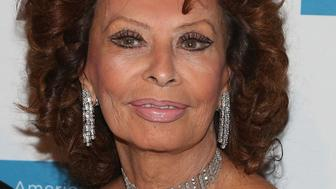 NEW YORK, NY - OCTOBER 19:  Actress Sophia Loren attends the 2015 National Arts Awards at Cipriani 42nd Street on October 19, 2015 in New York City.  (Photo by Taylor Hill/WireImage)