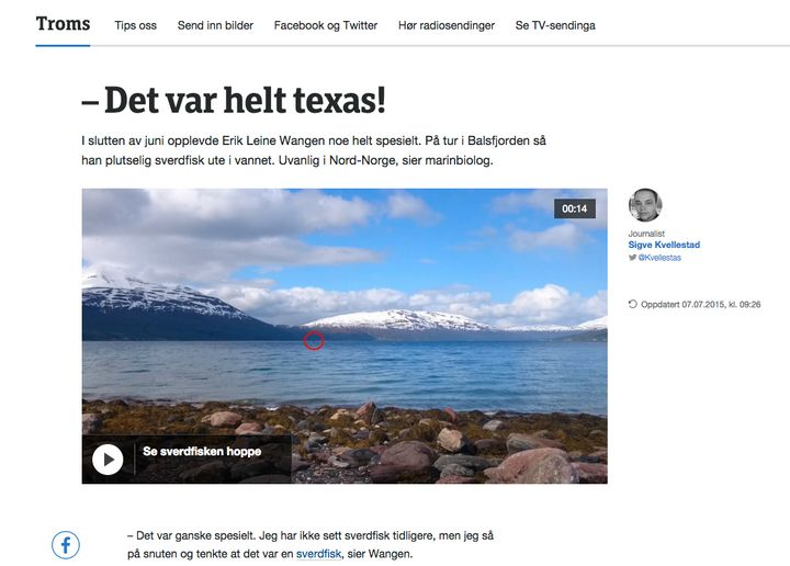 "A screenshot of a story about a swordfish spotted in Norway, using the phrase ""Der var helt texas."""