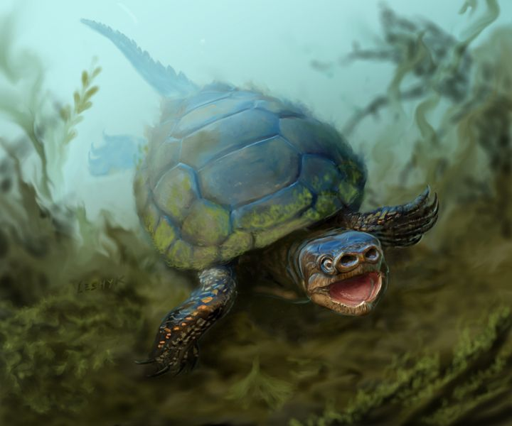 An artist&rsquo;s depiction of the turtle<i> Arvinachelys goldeni.&nbsp;</i>Researchers say the&nbsp;creature&nbsp;is unlike