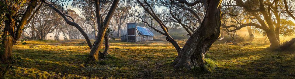 """Foggy Sunrise at Wallaces Hut"""
