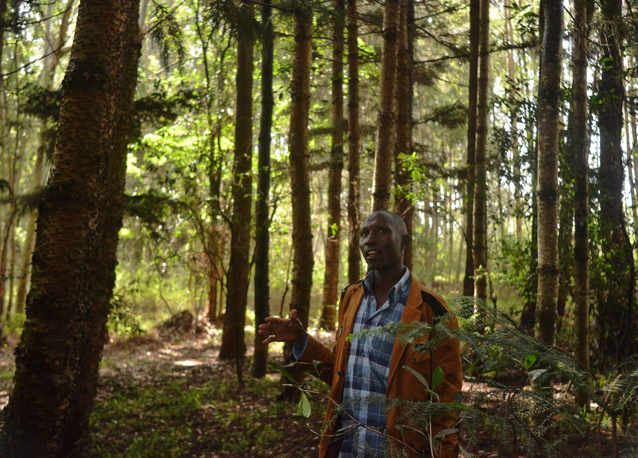 """Elias Kimaiyo says the Kenya Forest Service has burned down his home repeatedly as part of a push to evict him and other members of the Senger, an indigenous tribe, from the forests where they have lived for generations. """"Most of the time,"""" Kimaiyo says, """"I just live in fear."""""""
