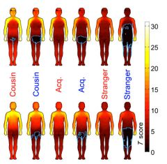 body heat map