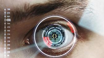 scan man's eye for identification