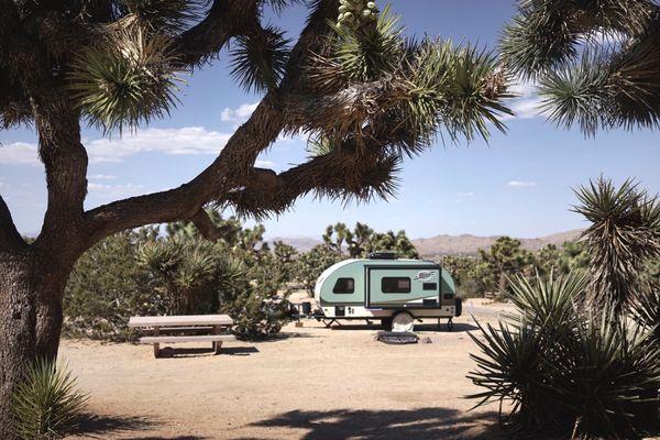 Mojave Desert, Joshua Tree National Park, California.
