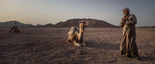 Arabian Desert, Egypt.