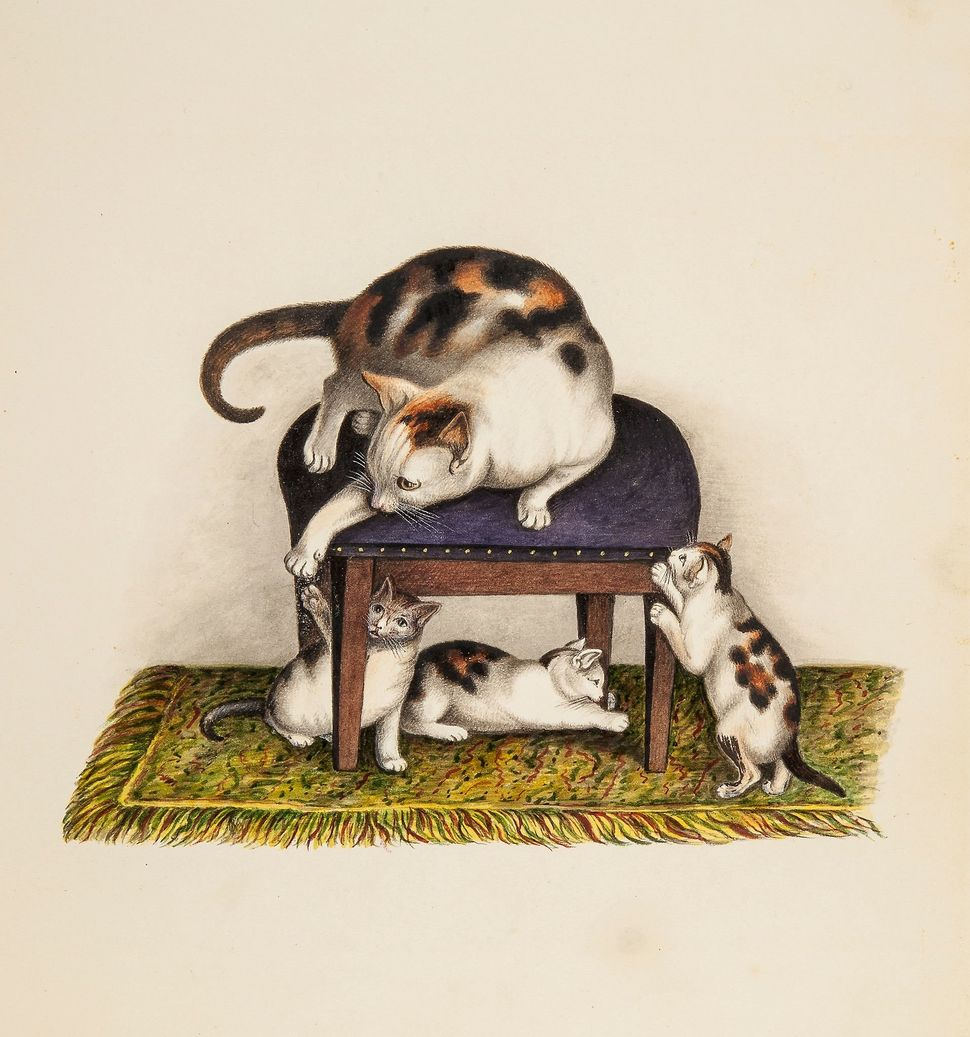 185. Mind (Gottfried, 1768-1814), Attributed to. Cat on a stool, playing with three kittens watercolour and bodycolour, over