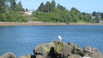 Netarts Bay - Oregon