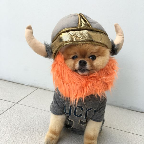 Leif Erikson never looked this cute!