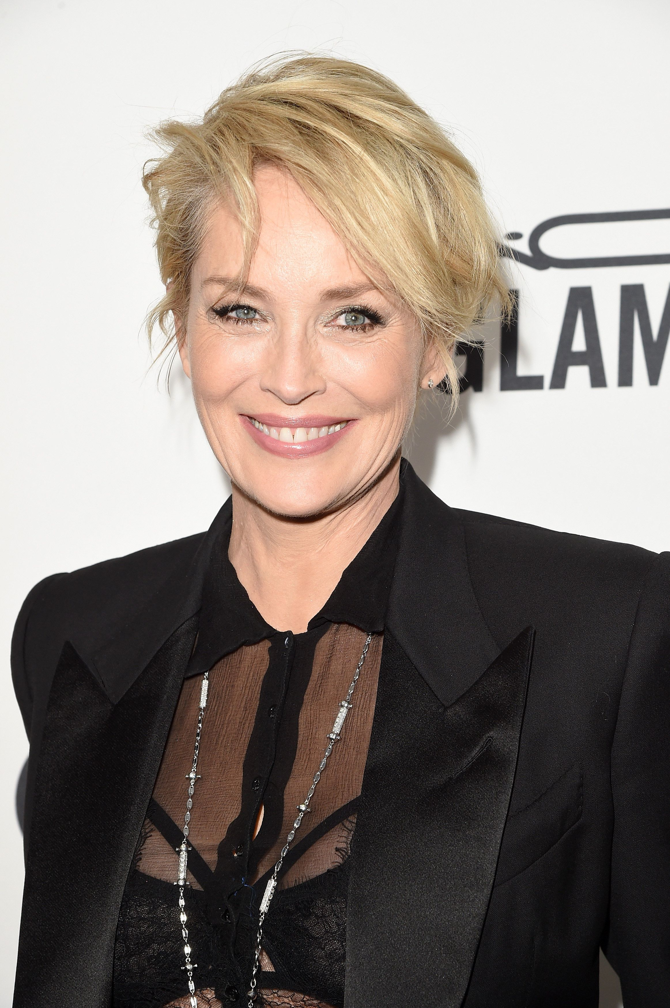 HOLLYWOOD, CA - OCTOBER 29:  Actress Sharon Stone attends amfAR's Inspiration Gala Los Angeles at Milk Studios on October 29, 2015 in Hollywood, California.  (Photo by Jason Merritt/Getty Images for amfAR)
