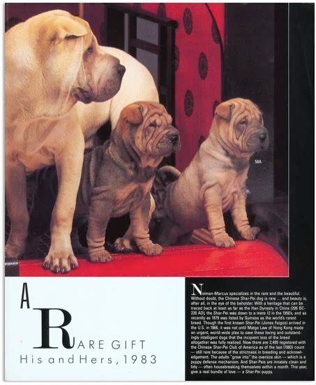 """<i>""""Mr. Marcus was known for specializing in the rare and the beautiful. In the 1950s the Shar-Pei was down to a mere 12 dogs"""