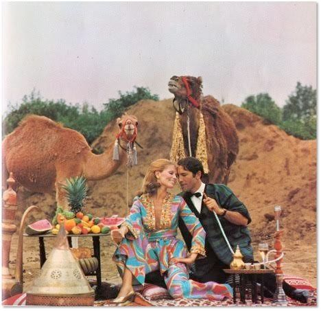 """<i>""""Only one was purchased. The camel arrived to the states on Christmas Eve just in time for live coverage on the 10 p.m. ne"""