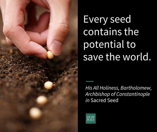 Seeds Are A Sacred Metaphor For Life And Renewal, Say These