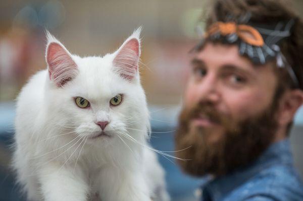"""With that beard, you're making ME get a flea bath?"""