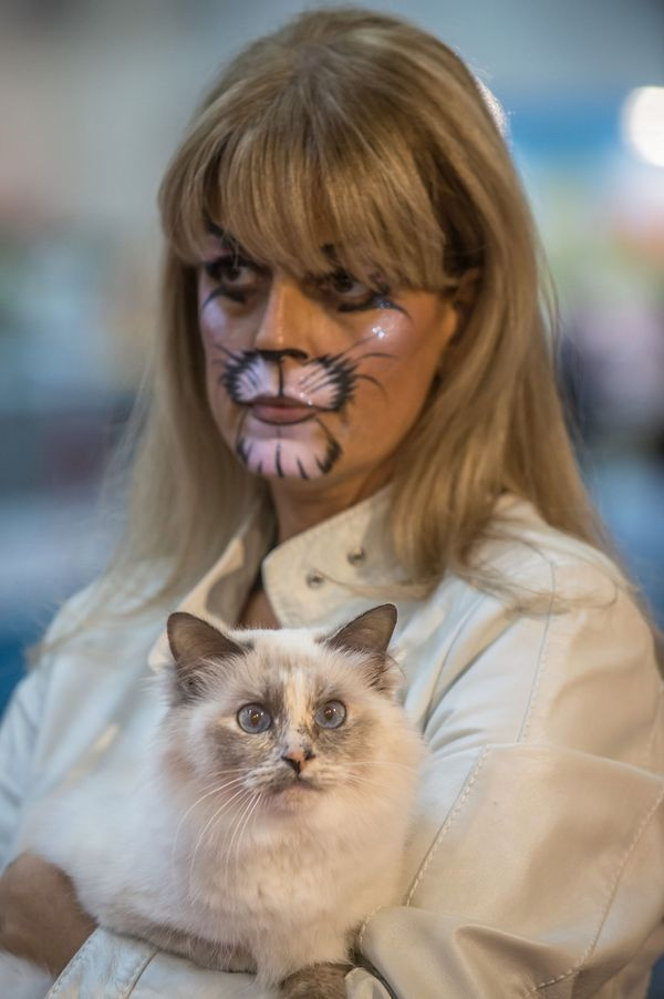 """""""She's got the cat makeup on again, doesn't she?"""""""