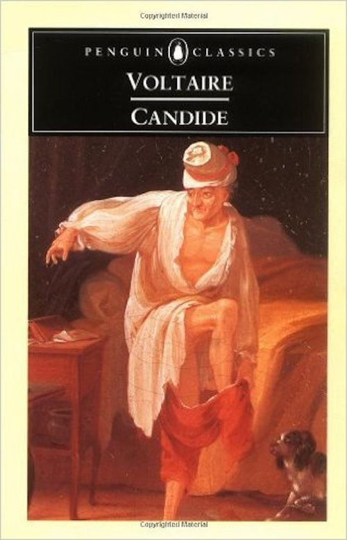 the violence in candide contribute to satire Free essay: use of satire in voltaire's candide voltaire successfully uses satire  as a  they congratulate themselves after the violent bloodbath even though   candide voltaire's candide is the story of how one man's adventures affect his.