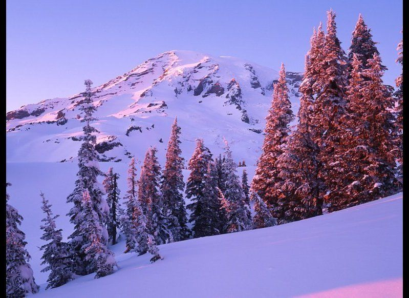 Oh, the irony. Paradise sees 56 feet of snow per year.  <em>iStockPhoto</em>