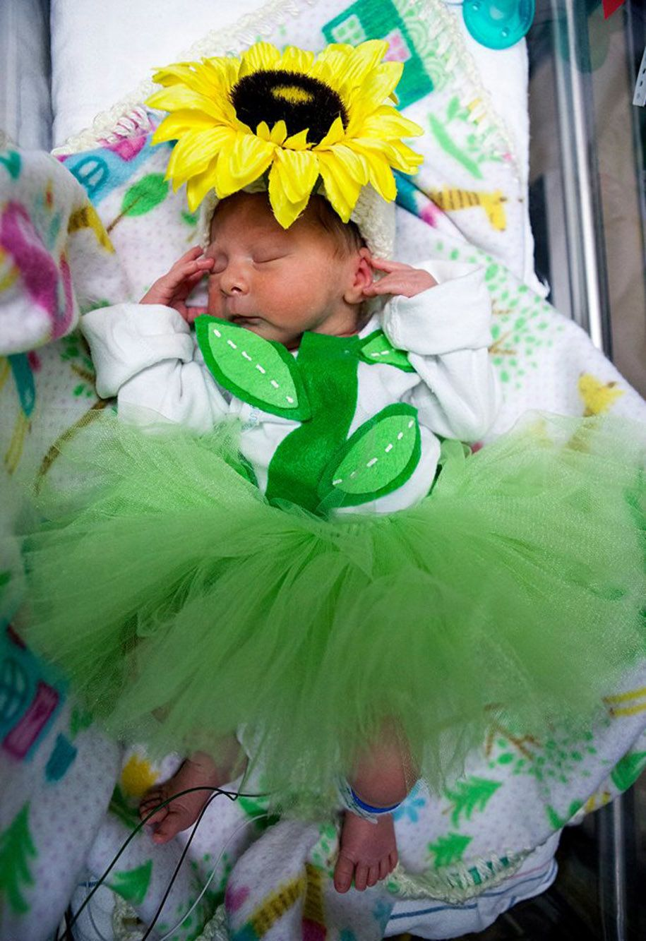 These Awesome NICU Nurses Made Halloween Costumes For Their Preemie Patients | HuffPost & These Awesome NICU Nurses Made Halloween Costumes For Their Preemie ...
