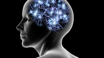 Conceptual computer artwork of a female head showing nerve cells within a brain shape.