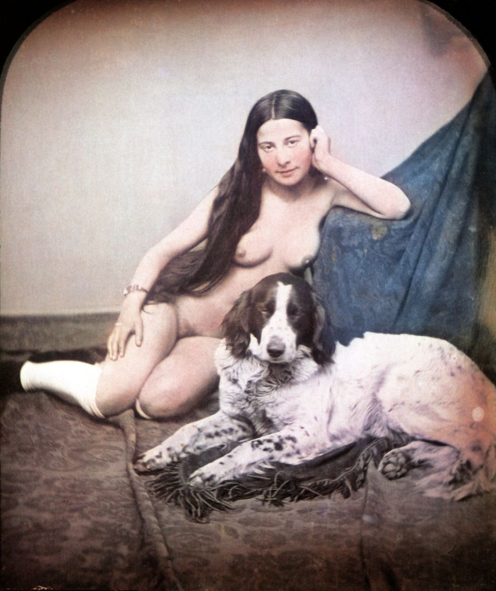 A nude woman is sitting on the floor next to a dog wearing only stockings. Hand-colored stereoscopic daguerreotype. 1850.