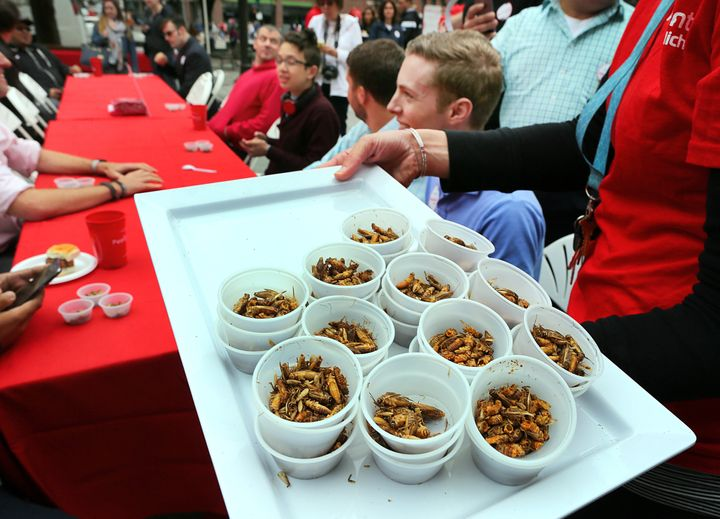 A 'pestaurant' or temporary bug restaurant, was set up in from of Faneuil Hall where people could chow down on food made with bugs.