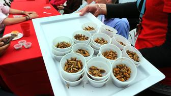 BOSTON - JUNE 3: A 'Pestaurant' or temporary bug restaurant, was set up in from of Faneuil Hall where people could chow down on food made with bugs. The pest control company, Ehrlich sponsored the event and made a donation to the Greater Boston Food Banks. A cricket eating competition was also held. Roasted crickets are given out to the contestants who had to eat two cups. Menu items included grasshopper burger, meal worm fired rice, bbq buffalo worms to name a few. (Photo by John Tlumacki/The Boston Globe via Getty Images)