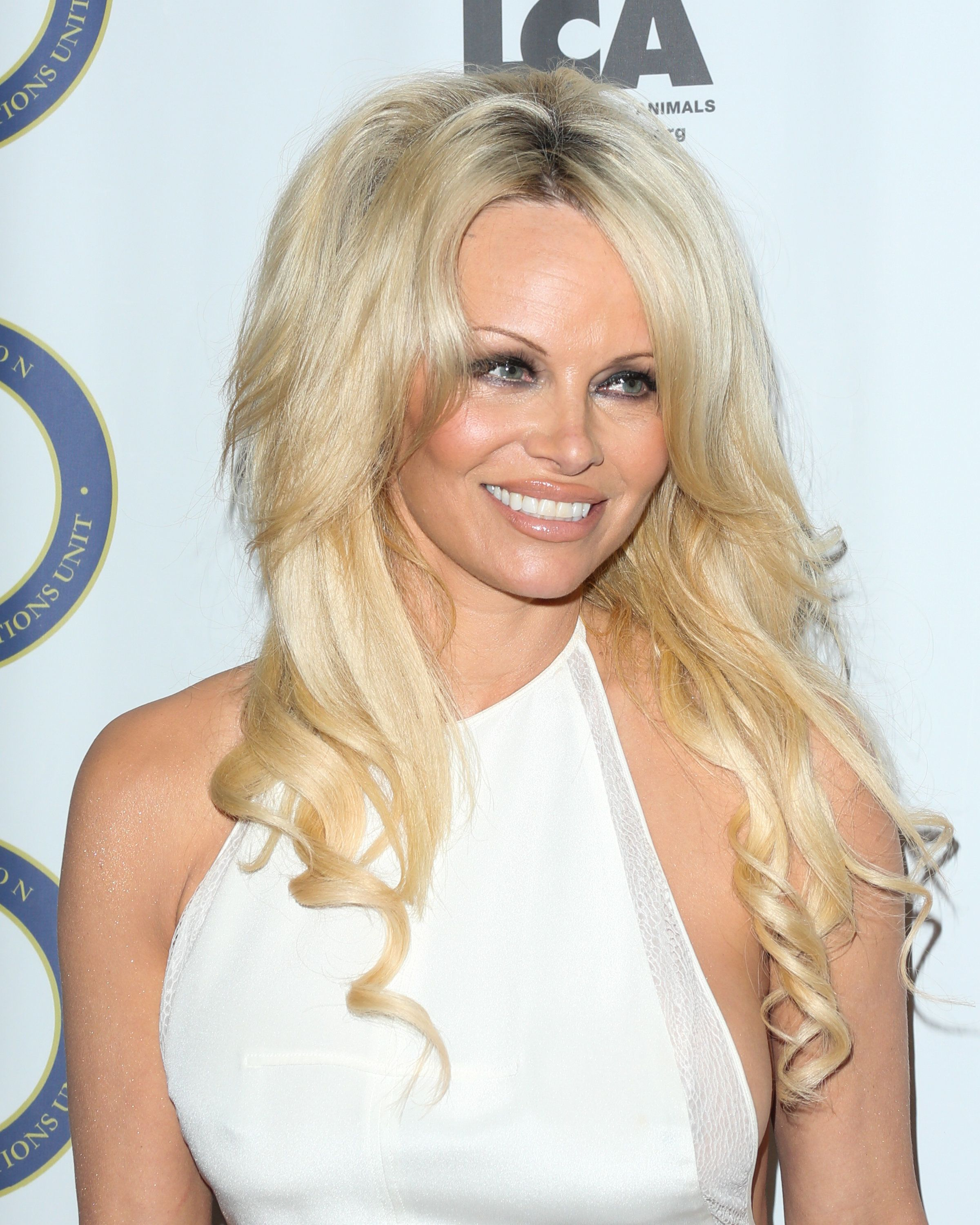 BEVERLY HILLS, CA - OCTOBER 24:  Actress Pamela Anderson attends the Last Chance For Animals Benefit Gala at The Beverly Hilton Hotel on October 24, 2015 in Beverly Hills, California.  (Photo by Paul Archuleta/WireImage)