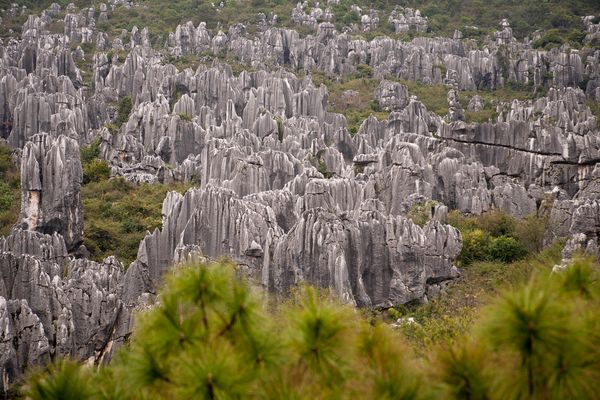 "This <a href=""http://www.atlasobscura.com/places/shilin-stone-forest"">270 million year old</a> ""stone forest"" is located in C"