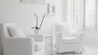 Armchairs in elegant white living room