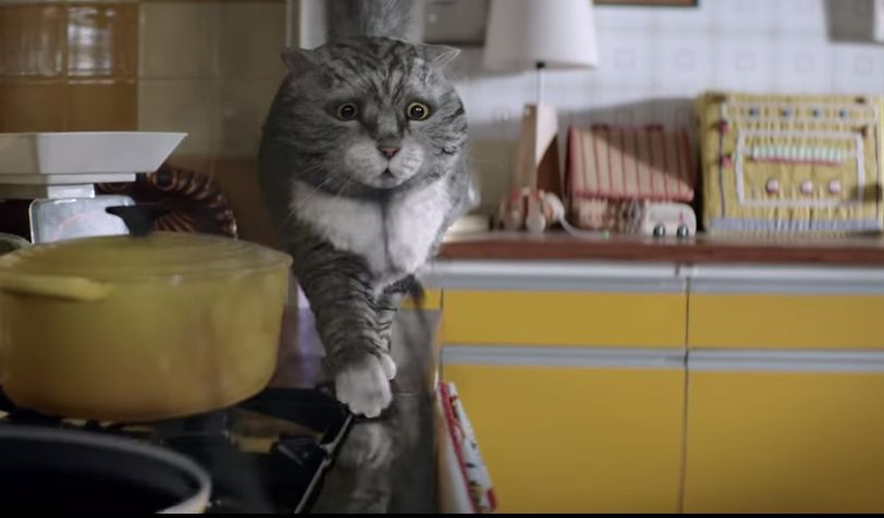 Mog the cat is the star of the Sainsbury's Christmas TV advert for 2015