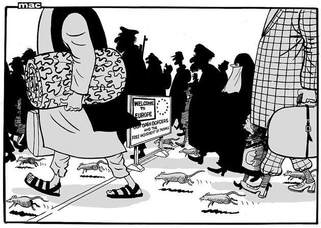 daily maill rats cartoon