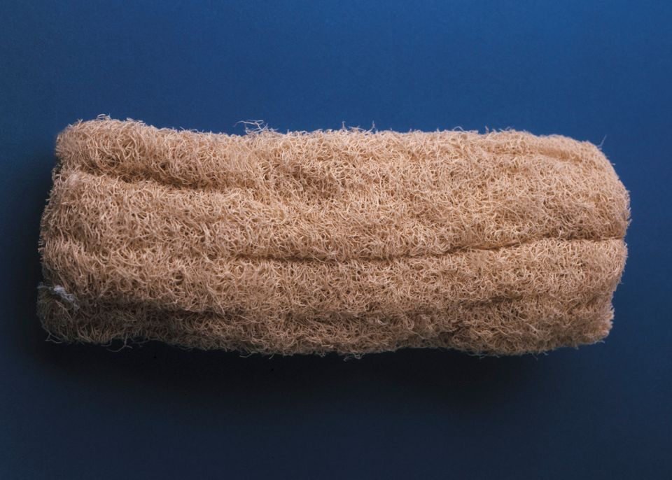 "You should <a href=""https://www.huffpost.com/entry/loofah-bacteria_n_4330801"" target=""_blank"">replace your loofah/sponge ever"