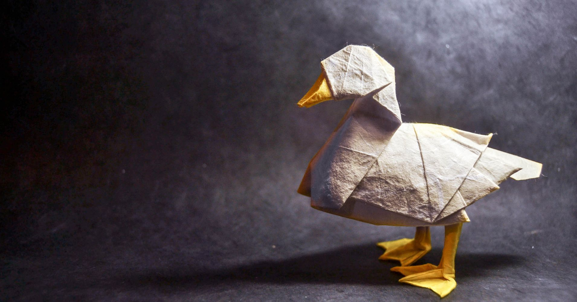Origami animals spring to life from one piece of paper huffpost jeuxipadfo Images