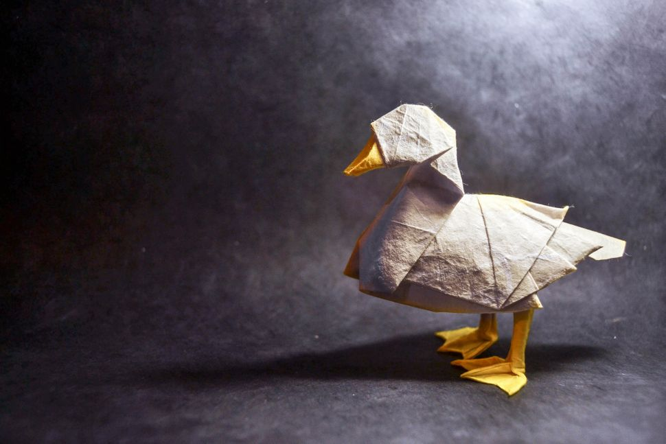 Origami Animals Spring To Life From One Piece Of Paper Huffpost