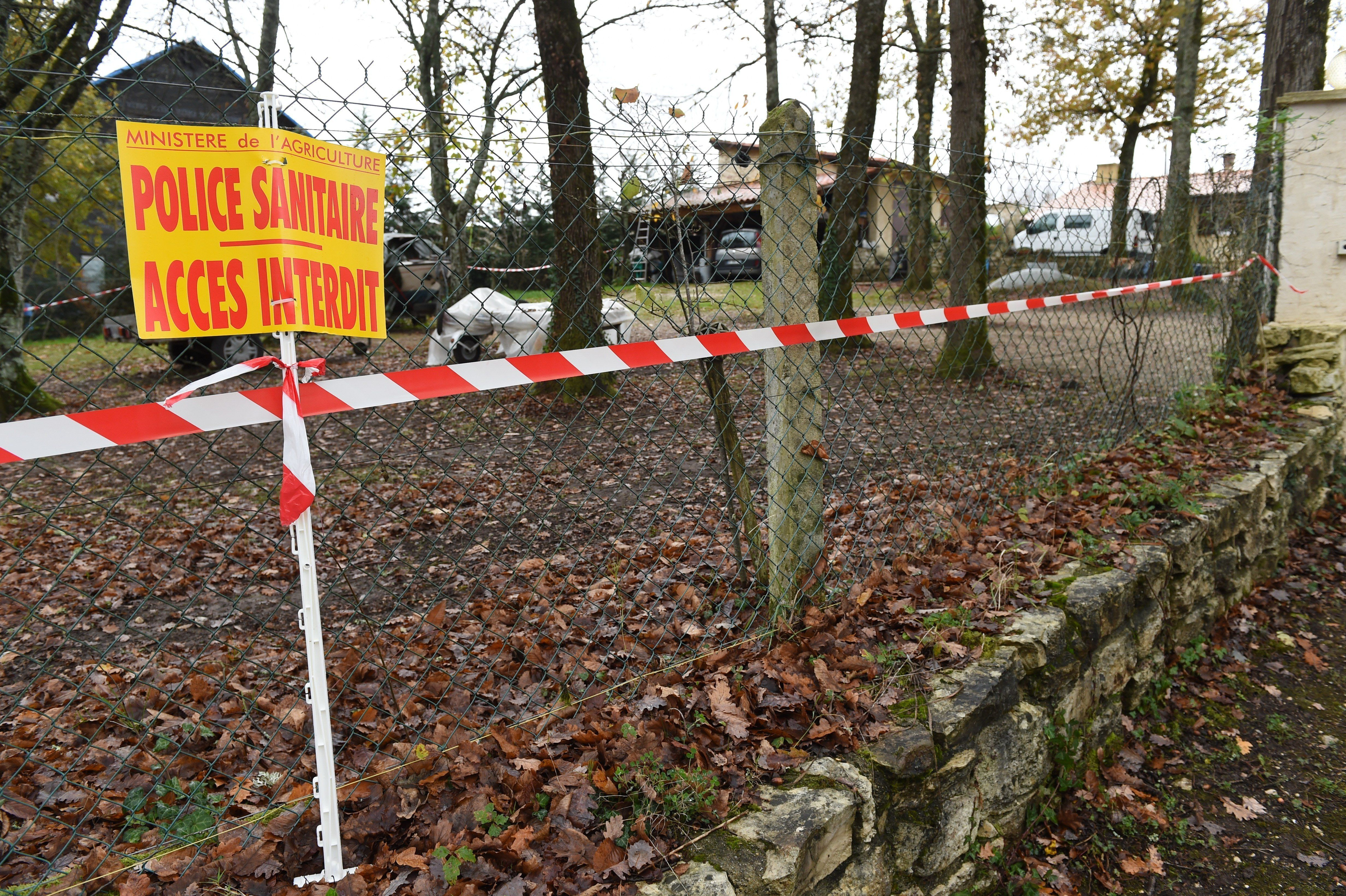 A placard reading 'Sanitary police. Access forbidden' has been set outside a house where an outbreak of the deadly H5N1 bird flu virus has been detected in chickens, on November 25, 2015 in Biras.  The bird flu outbreak, found among chickens, is the first to be reported in France since 2007 when it had been detected in wild swans, data from the World Organisation for Animal Health (OIE) showed. AFP PHOTO / MEHDI FEDOUACH / AFP / MEHDI FEDOUACH        (Photo credit should read MEHDI FEDOUACH/AFP/Getty Images)