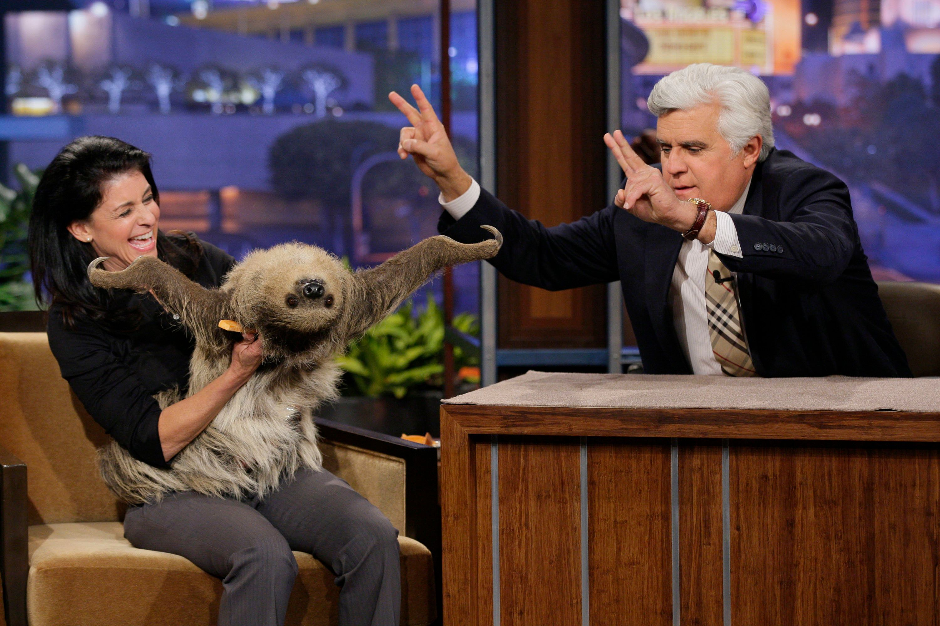 THE TONIGHT SHOW WITH JAY LENO -- Episode 4439 -- Pictured: (l-r) Animal expert Julie Scardina with a sloth during an interview with host Jay Leno on April 5, 2013 -- (Photo by: Paul Drinkwater/NBC/NBCU Photo Bank via Getty Images)