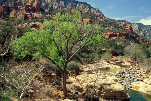 """Arizonans can <a href=""""http://www.azcentral.com/story/travel/2015/11/20/arizona-state-parks-free-admission-black-friday/76107"""