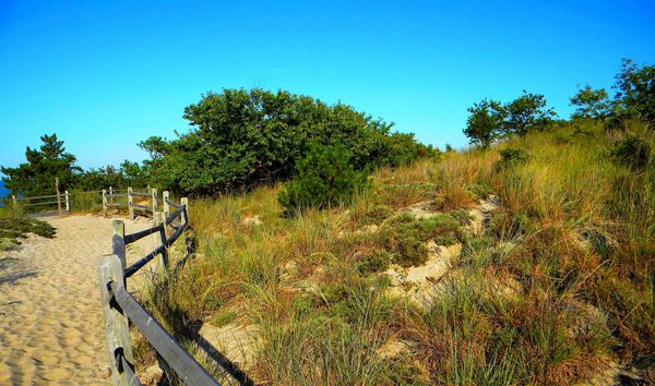 """<a href=""""http://www.destateparks.com/"""">All of Delaware's state parks</a> will be free on Friday."""