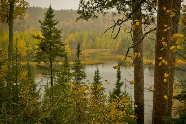 """Minnesota is <a href=""""http://www.dnr.state.mn.us/freeparkfriday/index.html"""">waiving admission</a> at 75 state parks and recre"""