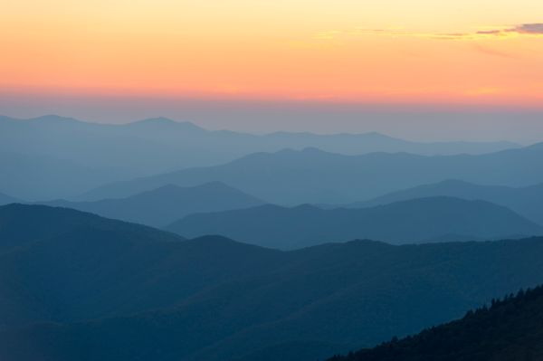 """Great Smoky Mountains National Park will offer free, guided <a href=""""http://friendsofthesmokies.org/news/park-offers-black-fr"""