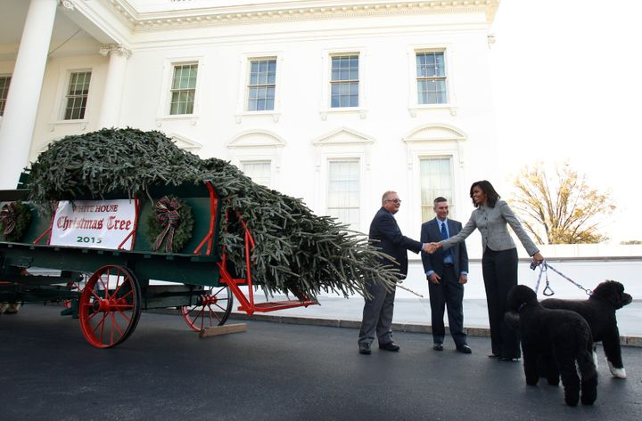 This year's official White House Christmas tree is 18.5 feet tall.